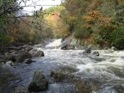 streams0291