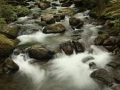 streams0601