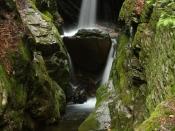 streams1411