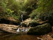 streams1449