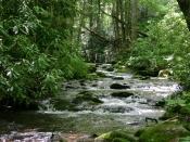 streams1645