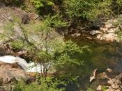 streams1646