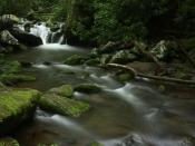 streams5165