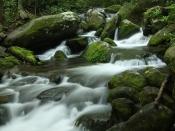 streams5193