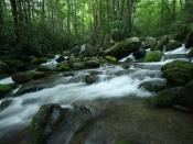 streams5201
