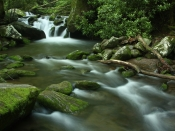 streams5213