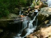 streams6036b