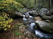 streams6647a