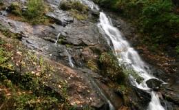 Amicalola Falls 1125c